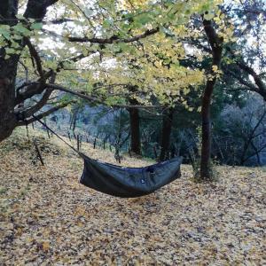 〔ハンモック泊〕ソロキャンプにおすすめのスタイル
