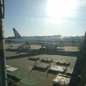マイルで行く韓国① 海外個人旅行のすすめ