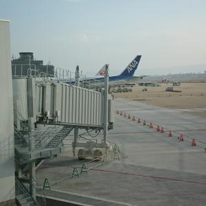 羽田国際ターミナルが無くなる!?空港の大変革は要チェックです。