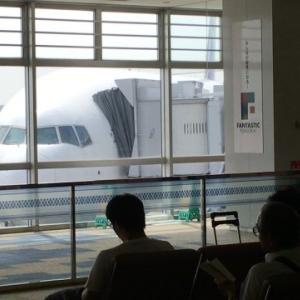 航空業界に久々の朗報!?大韓航空がサプライズの黒字転換です。