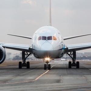 座席や収納棚にもマスク!?今 航空貨物が貴重な収益源になっています。