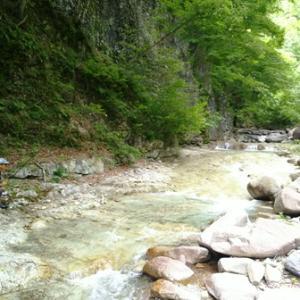 記憶の釣行 片品川源流