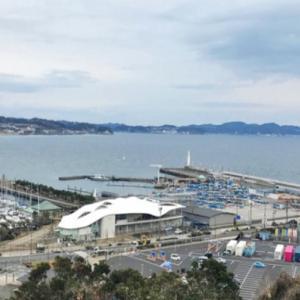 東京オリンピックセーリング開催江ノ島へ一足早くいってきた~