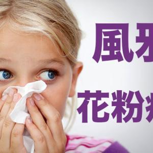 花粉症対策の市販薬はコンタック、鼻洗浄はハナクリーン