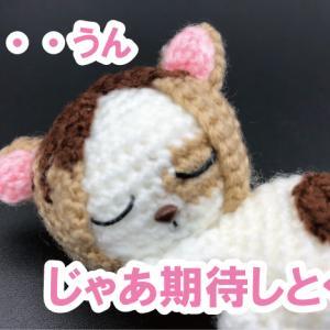 ★作品紹介★ハイキュー!!研磨ネコ(けんまねこ)のあみぐるみ作ってみた!