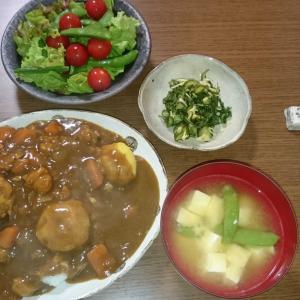 今日の夕飯と謎の作物