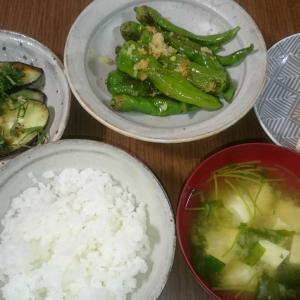 昨日、今日の夕飯
