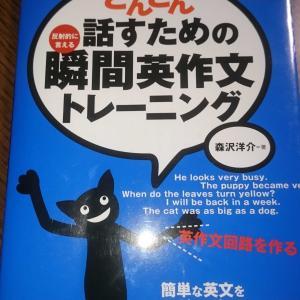 人生数十回目の英語学習
