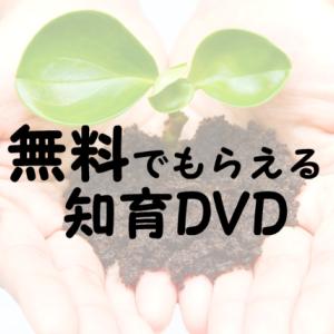 【お得情報】無料でもらえる知育DVD2歳~5歳におすすめ