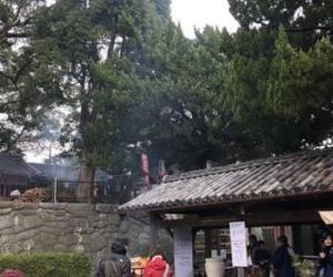 とんかつ野崎【愛宕山大祭】