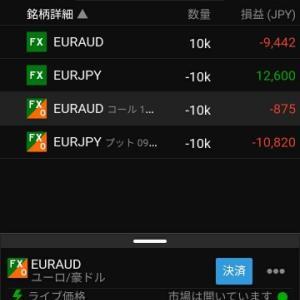 FXオプション再開 38営業日目