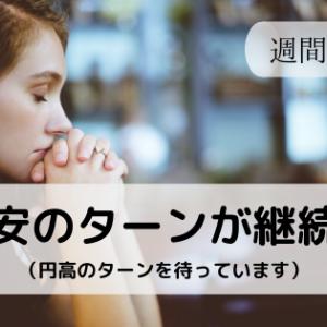 相関トラリピαの週間報告(~5/30) 円安のターンが継続中