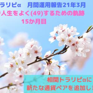 【月間運用報告】4月フールの決意表明★☆彡