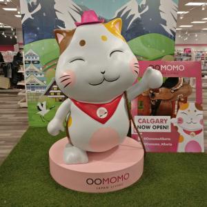 カナダでも日本の100均商品をゲット!【OOMOMO】でダイソー、セリアの便利グッズが手に入る!