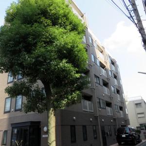 はじめての東京での賃貸物件探し(その1)