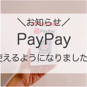 \お知らせ/PayPayが使えるようになりました!