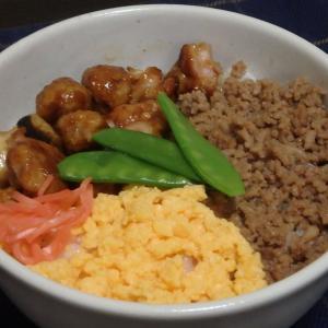高尾山(#569)と三色丼