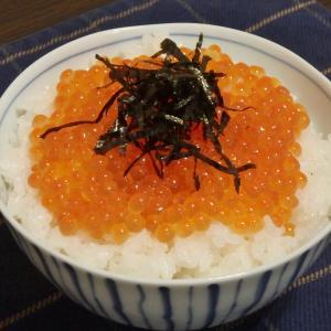 高尾山(#673)と待望のいくら丼
