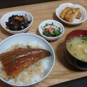 高尾山(#706)と鰻の端っこ丼