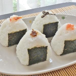 デリバリーピザとミニおにぎりと高尾山(#925)