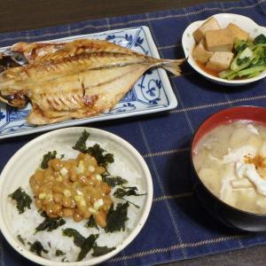 鰺の干物と高尾山(#1005)