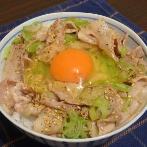 ネギ塩豚丼と高尾山(#1013)
