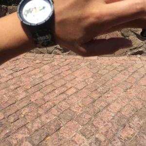 ブローバ フランク・ロイドコレクションに注目が集まっていますよ / 今日はswatch x BAPE