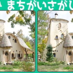 【間違い探し】左右の写真から間違いを3か所探す問題