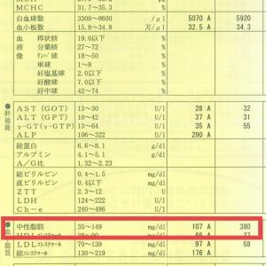 【ぐりパパ流】サブ4達成の練習内容-2019年8月編