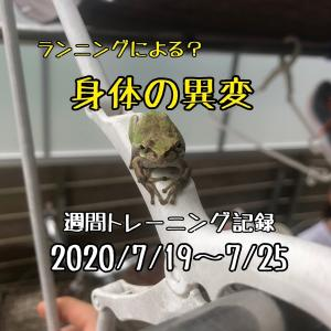 【週報】ランニングによる?身体の異変(2020/7/19~7/25)
