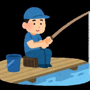 【悲報】サビキ釣り、釣れない