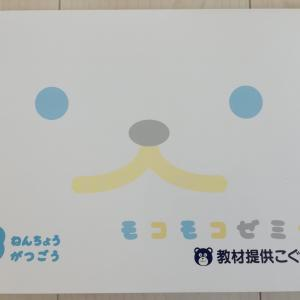 SAPIXこぐま会モコモコゼミの年少・年長レビュー【親の関わりが大事】