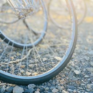 【購入者目線】電動自転車の選び方とおすすめ人気車種【成長後は?】