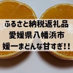 【ふるさと納税返礼品】愛媛県八幡浜市ゼリーのような食感媛一まどんな