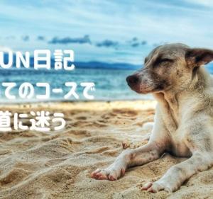 今日のRUN日記 ~1月2日~