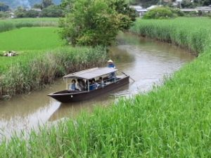2020年6月3日(水)の活動報告 #オンライン授業 #居場所 #町家 #八幡堀 #かふぇ #れおにーせ