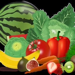 野菜スペシャリスト試験