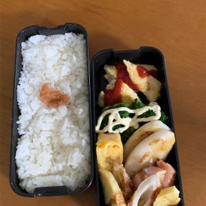 今日のお弁当と私の昼ごはん