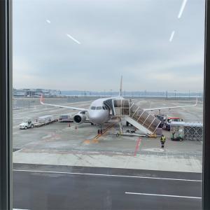 沖縄、行ってきます。