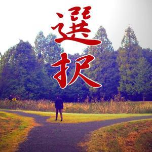 麒麟(15)道三の「三本の道」