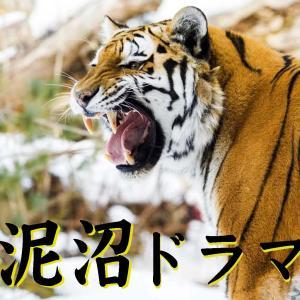 塩の道は人の道(2)泥沼の虎