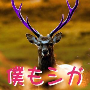 麒麟(42)賀の牙城