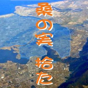 麒麟(44)桑の実 拾た(京への道1)