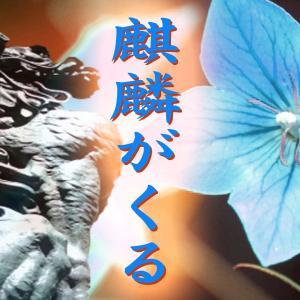麒麟(54)麒麟がくる・最終回 / 本能寺の変