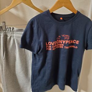 20200908の服~洗濯ネットで洗うTシャツコーデその2~