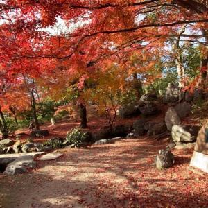 紅葉の時期の東本願寺、渉成園〔しょうせいえん〕 -枳殻邸〔きこくてい〕にて