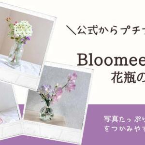 ブルーミーライフ【届く花に合う花瓶は?】公式の商品から100均まで試してみました。