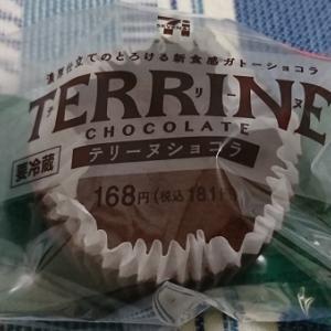 【セブンイレブン】テリーヌショコラの感想|言わばショコラ感の強いベイクドチーズケーキ