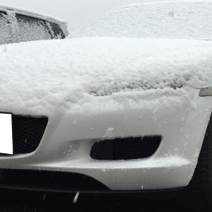 時季外れの雪!