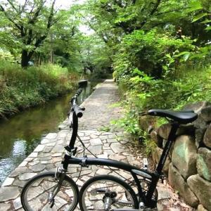 「川崎市緑化センター」の温室は、南国ムードがいっぱいです